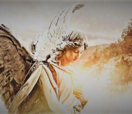 Lorna legge le carte degli Angeli – Serata a offerta libera